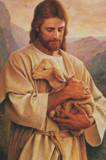 Jesus Lamm